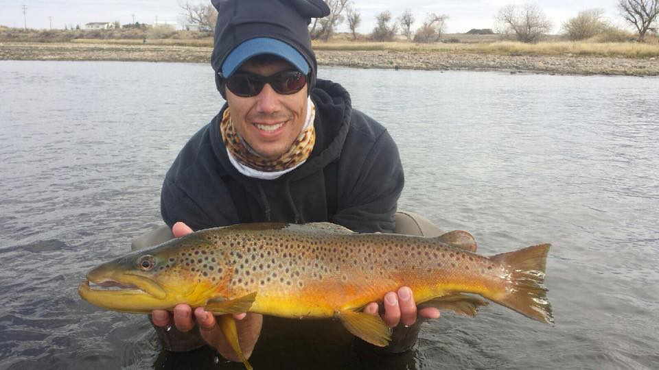 North platte river fly fishing shop grey reef guides for James river fishing report